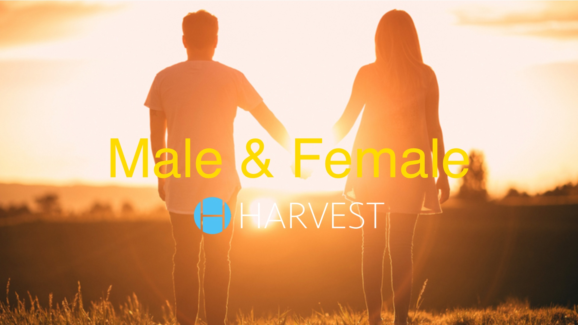 Male & Female