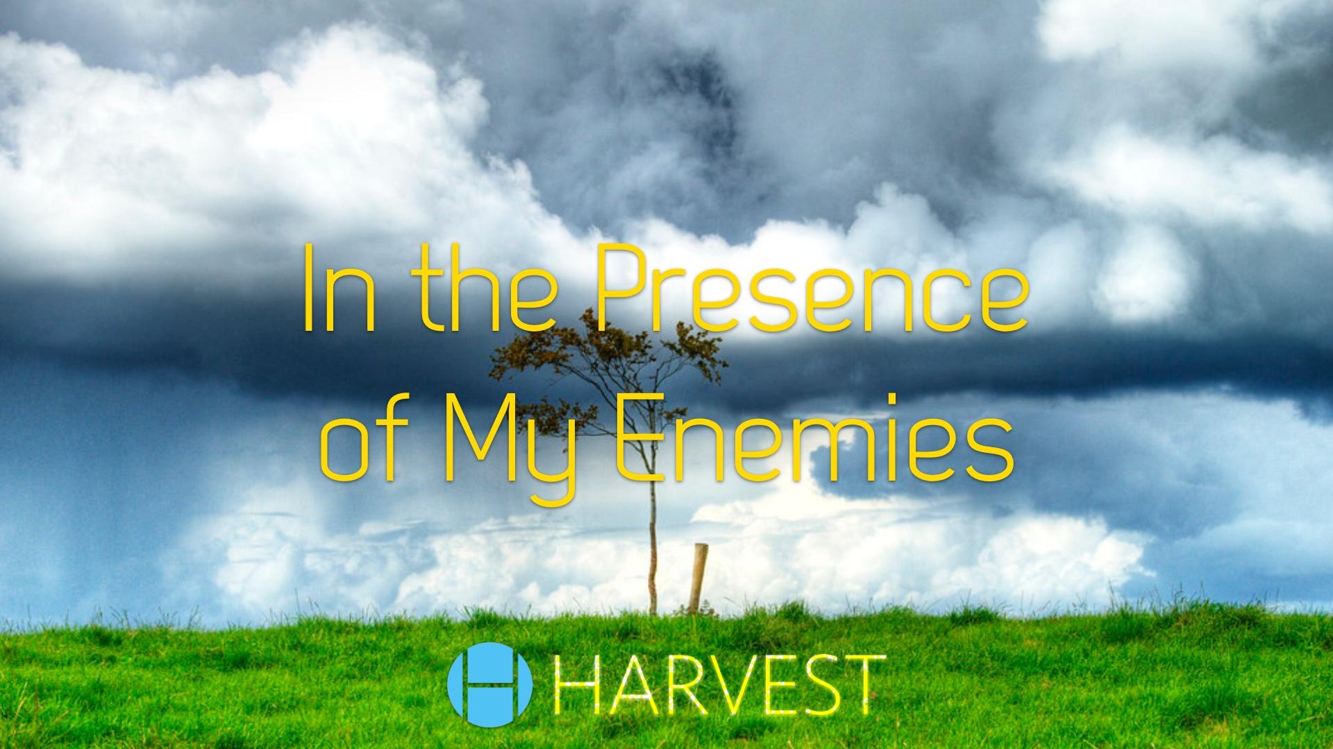 In the Presence of My Enemies