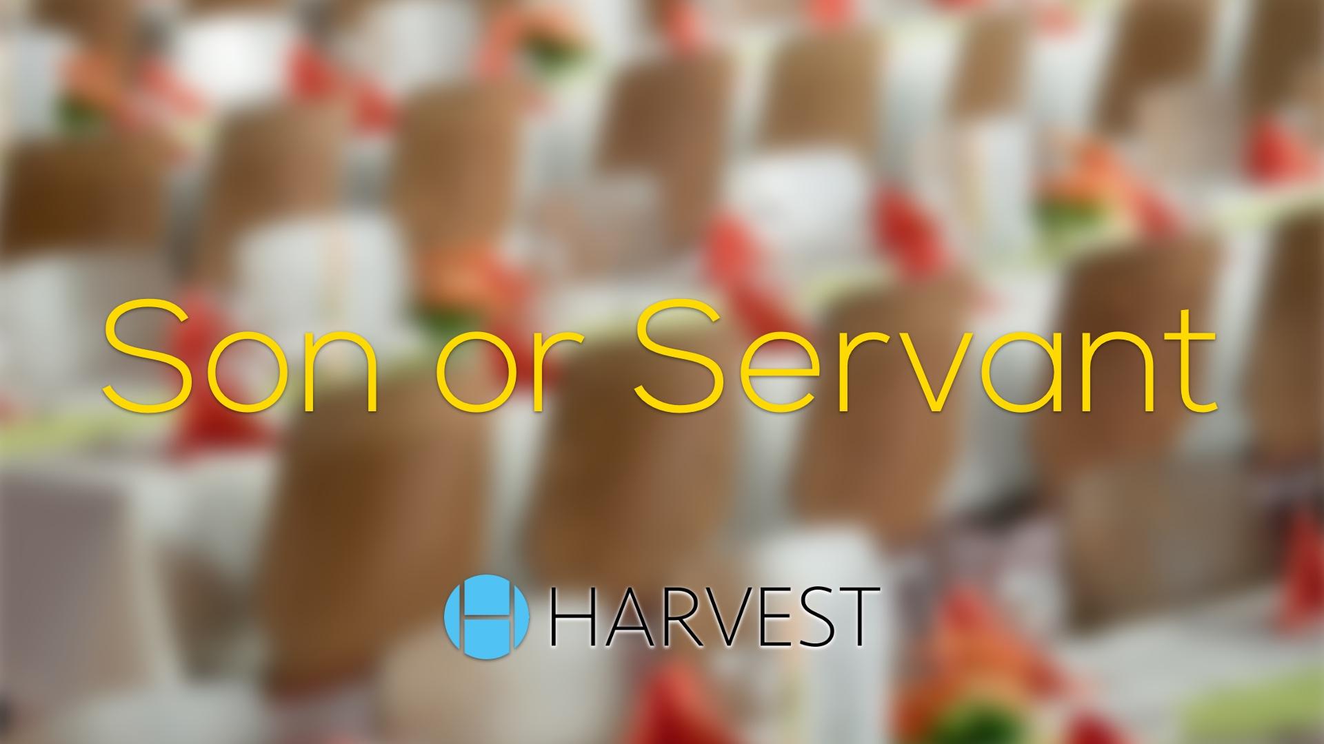 Son or Servant