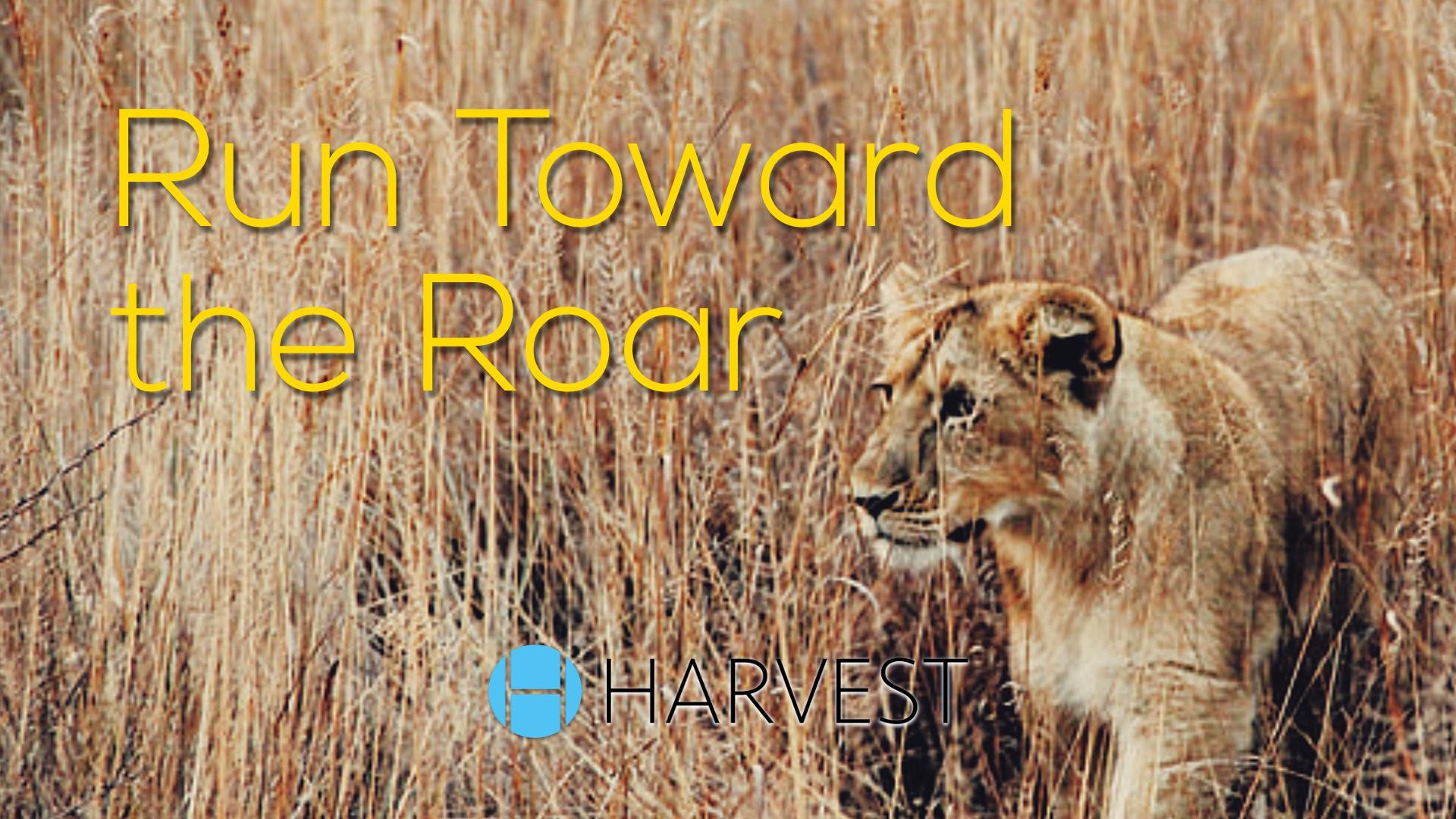 Run Toward the Roar