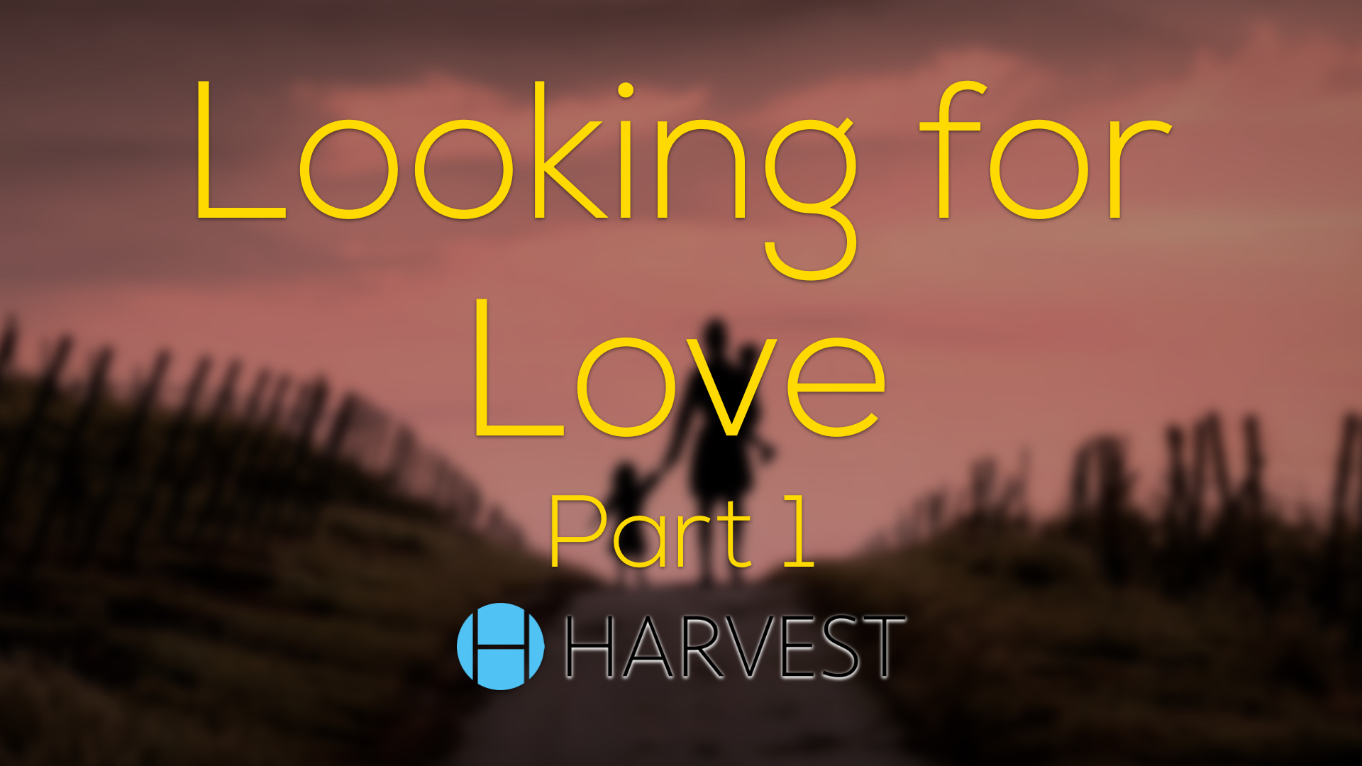 Looking for Love – Part 1