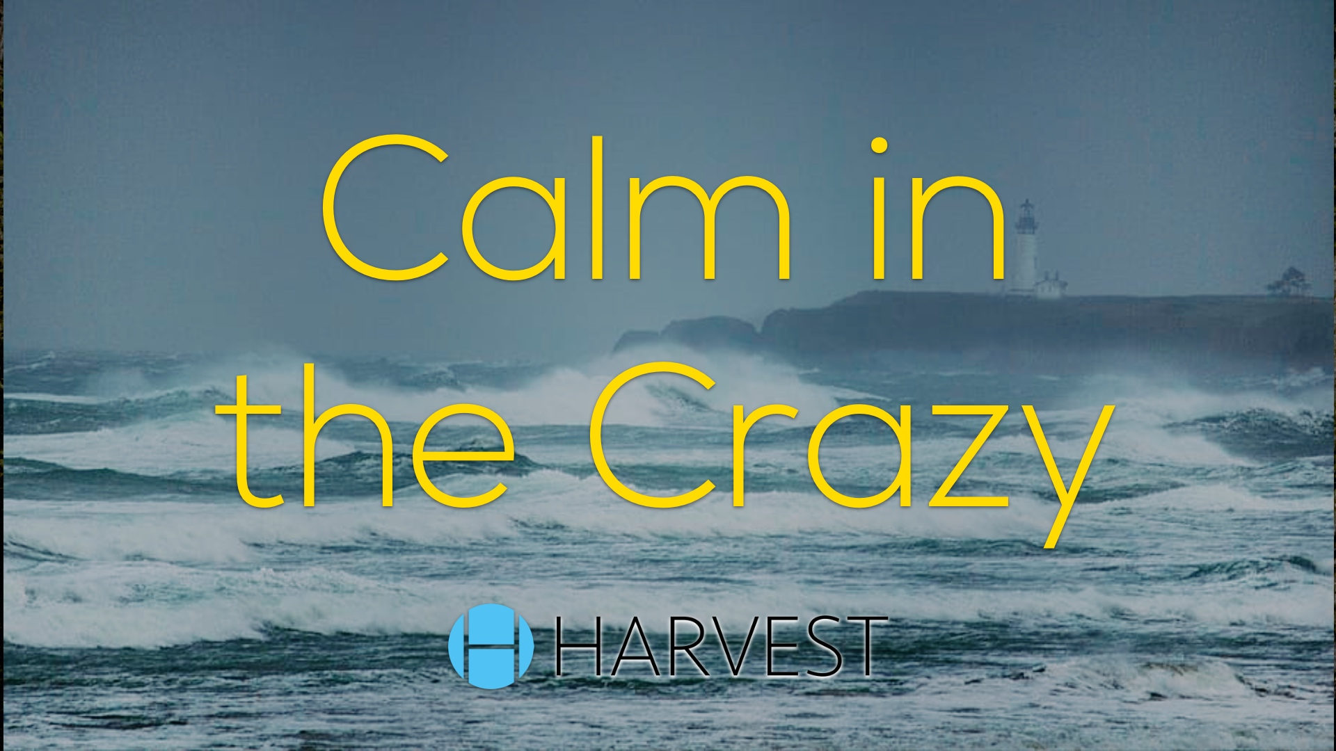 Calm in the Crazy